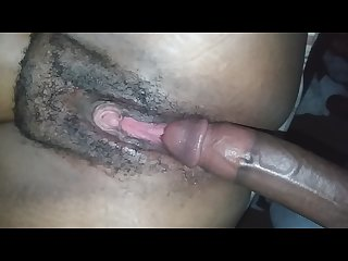 Black Stallion fuck pink pussy